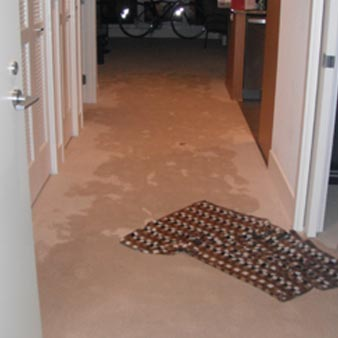 We found the leak in this home. It had flooded the carpet